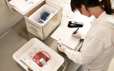 Matične ćelije iz pupčanika: Koje sve bolesti leče?