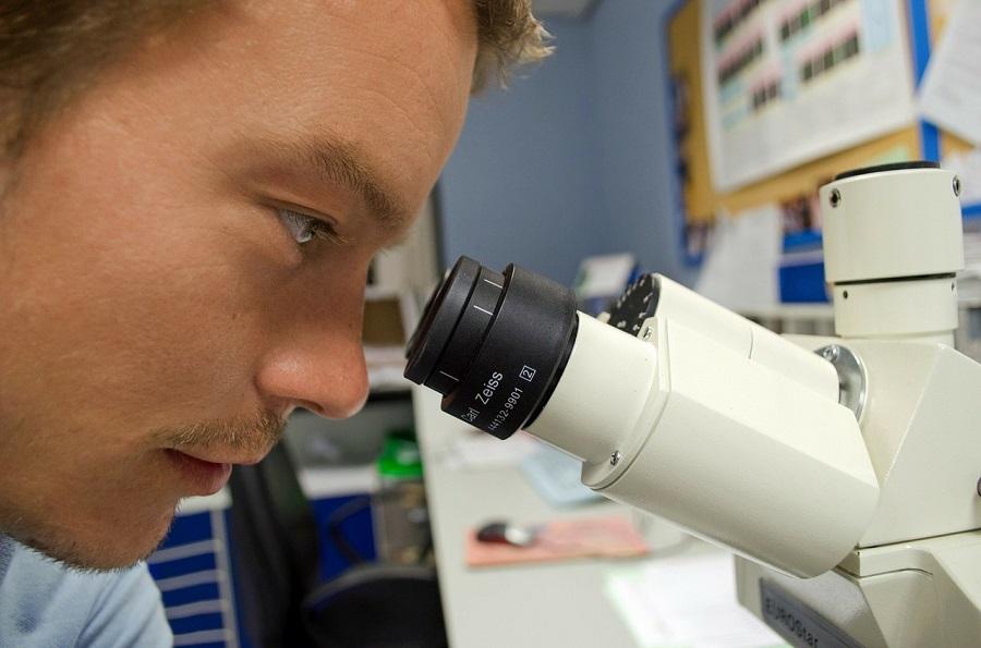 lecenje raka maticnim celijama