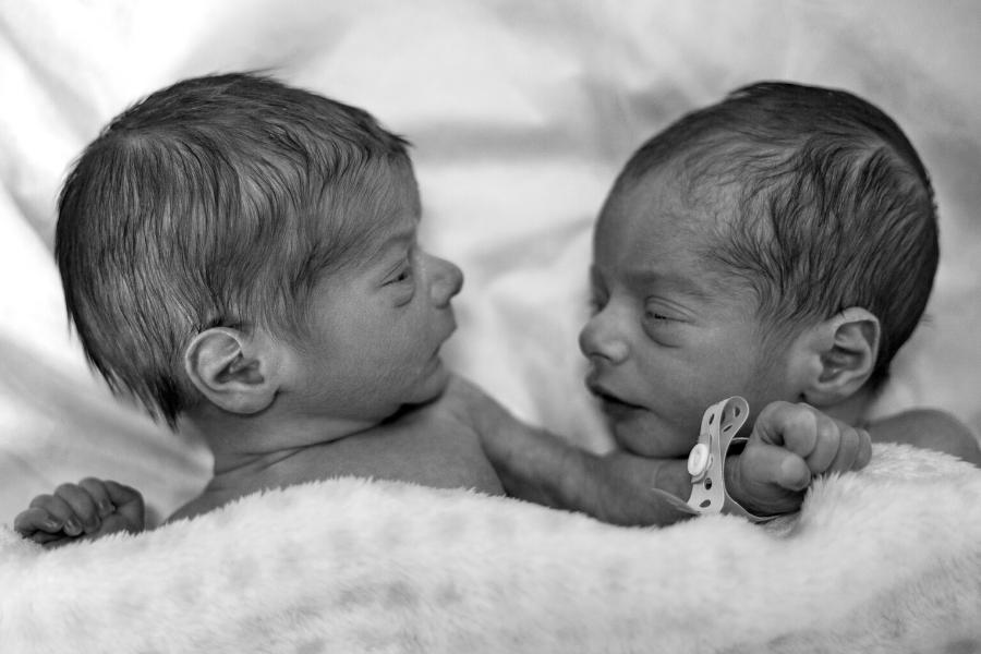 blizanci nakon porodjaja